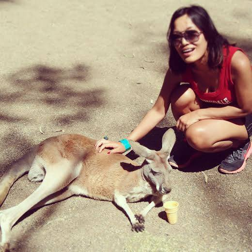 thingstodoinsydney-Kangaroo