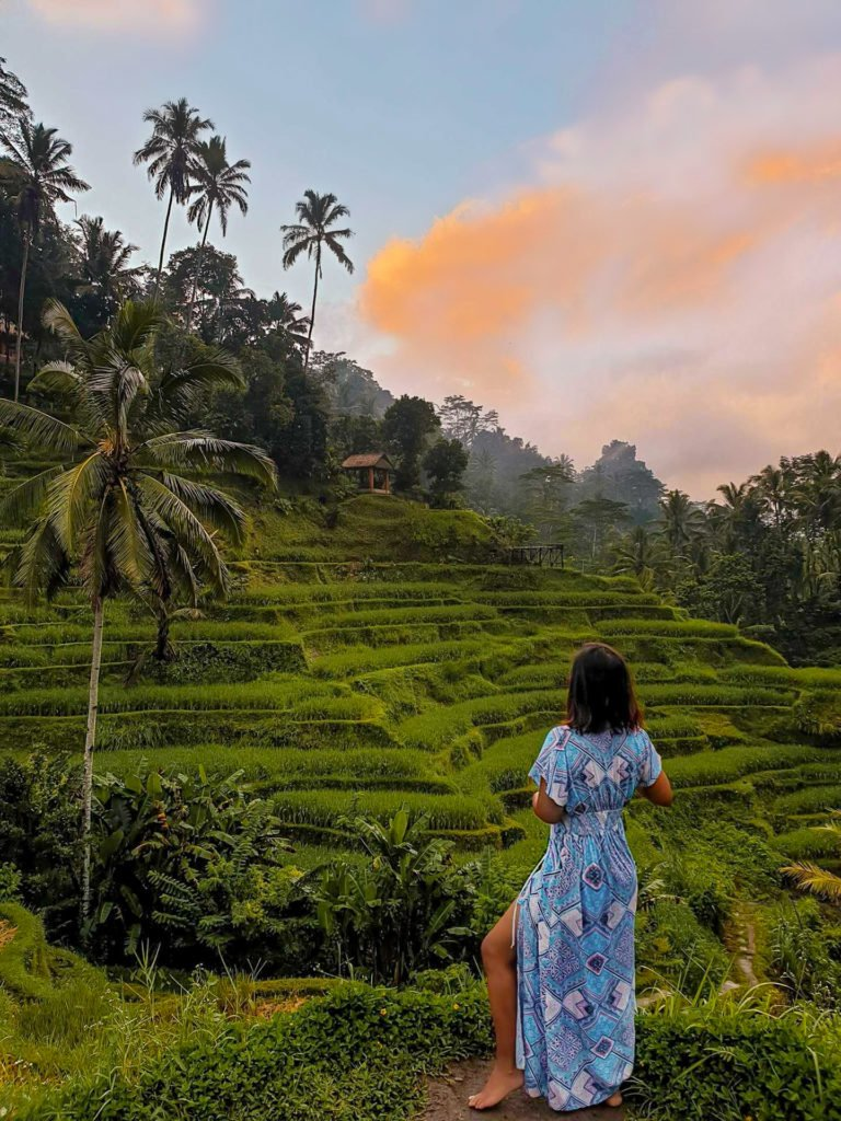 2 weeks in bali at the rice terraces