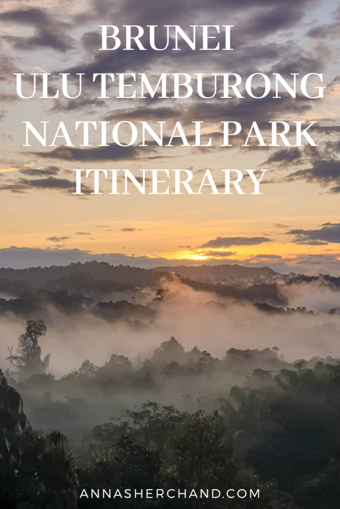 Ulu temburong national park itinerary