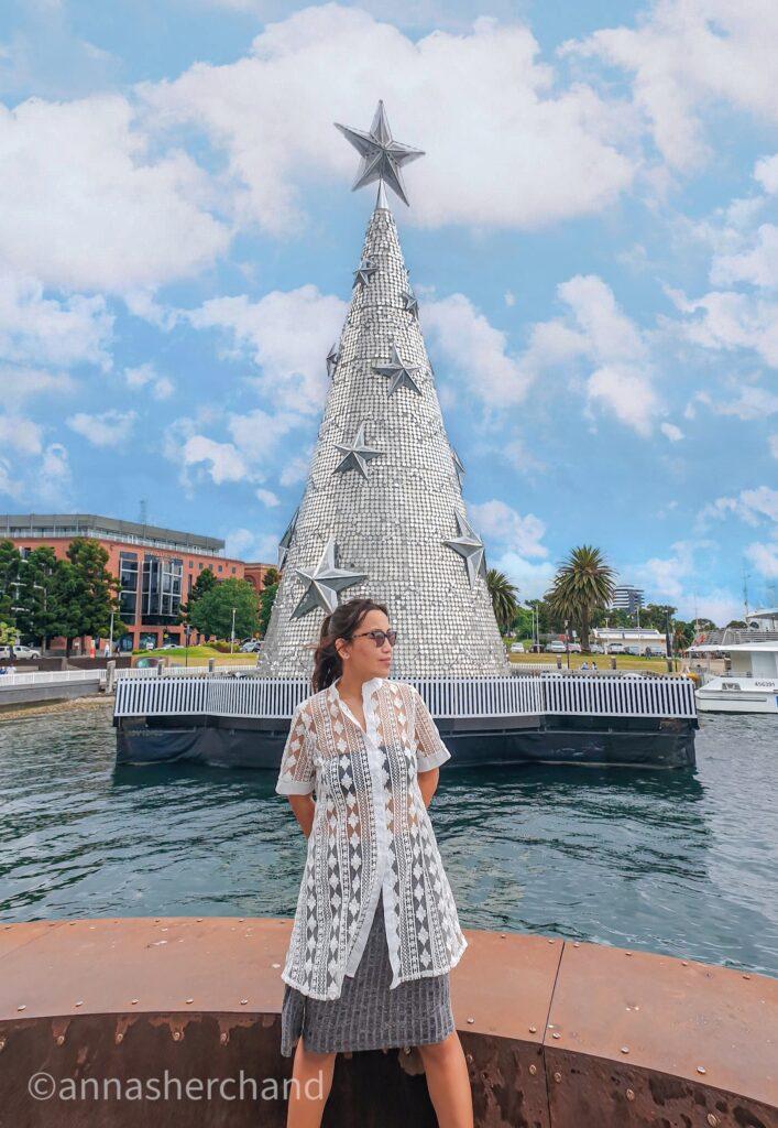 silver christmas tree in geelong australiaa