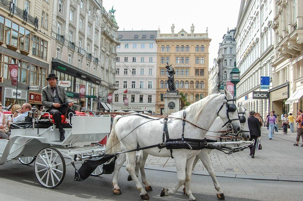 horse carts in vienna