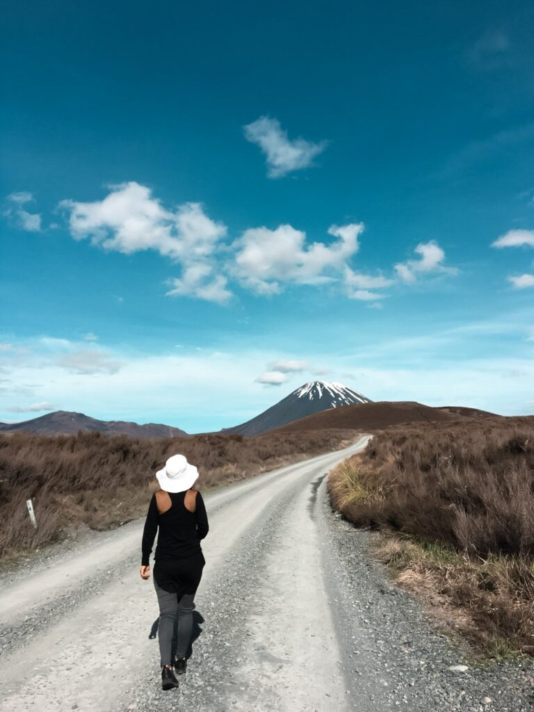 best scenic places in new zealand