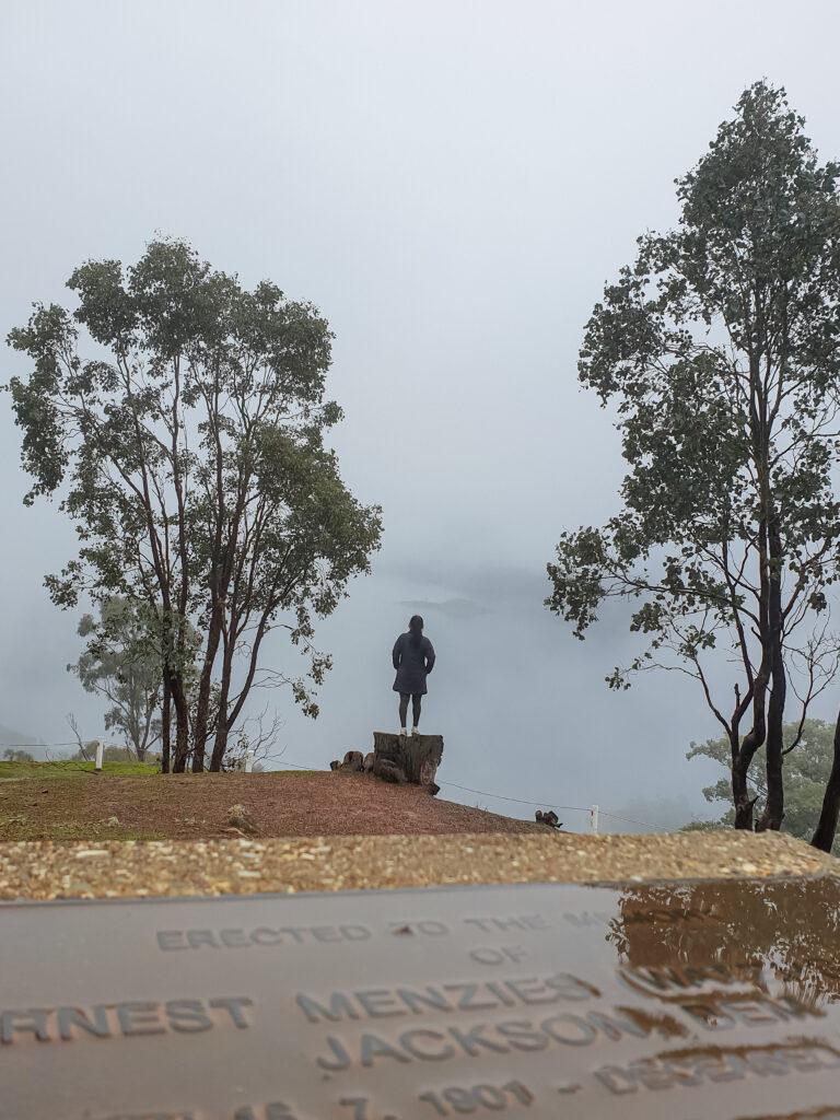 Foggs lookout Lake eildon